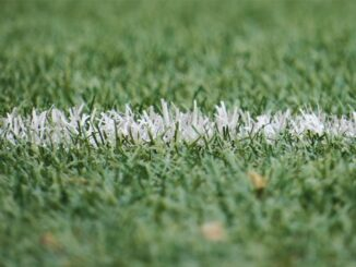 Apuestas Manchester City vs Monchengladbach Champions League